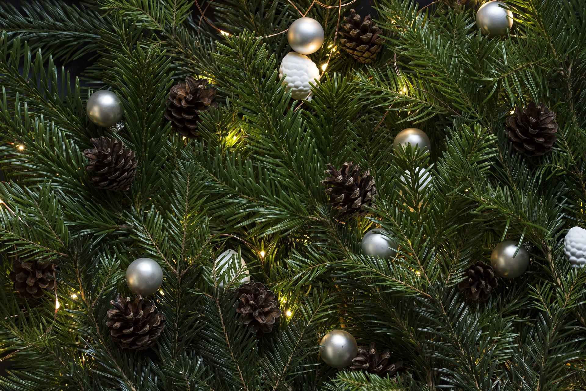 tradiciones navideñas galicia